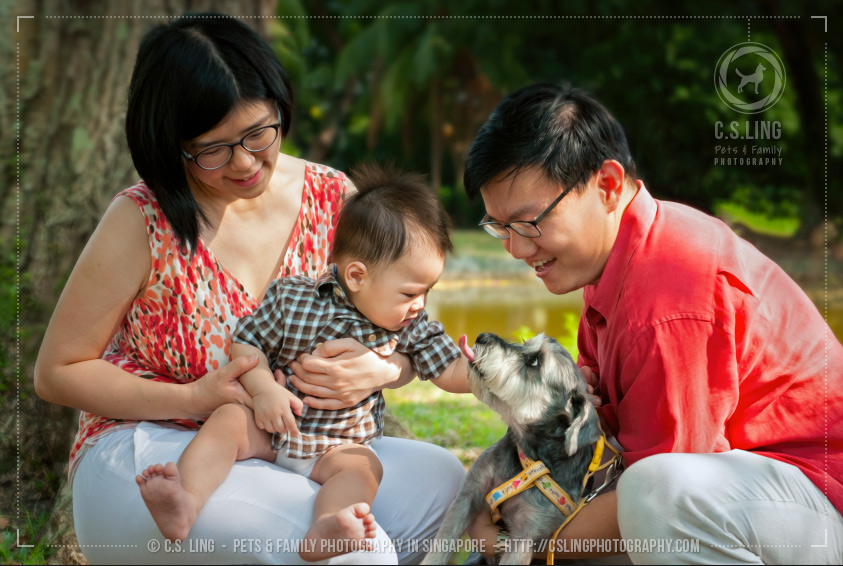 Baby checking out dog - Singapore Pet Photography