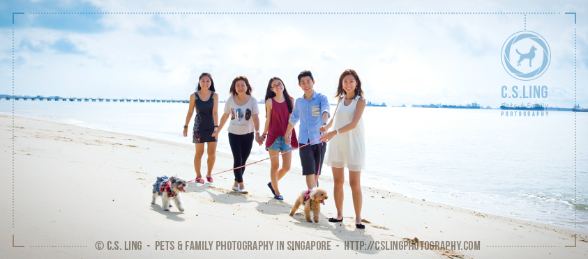 Sherwin and Winnie walking with family - Singapore Dogs Photography