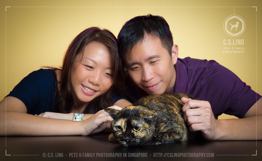 Germaine and James with Sam - Singapore Cats Photography