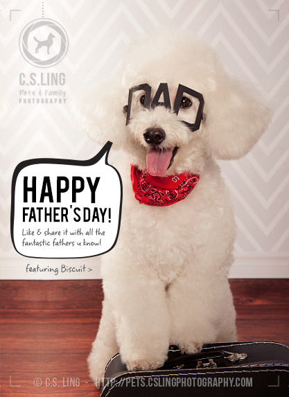 Happy Father's Day from C.S.ling Pets & Family Photography
