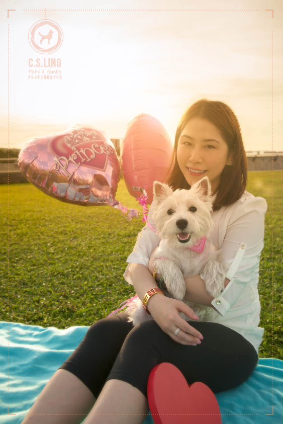 csling-pet-photography-marina-barrage-singapore-westie_5