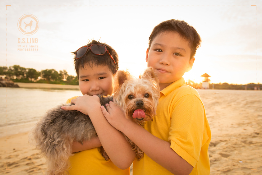 Pet Photography Kids Singapore